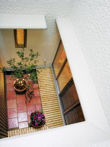 2階から見下ろすと、白い壁、灯り、植物の色のコントラストがとてもお洒落です。