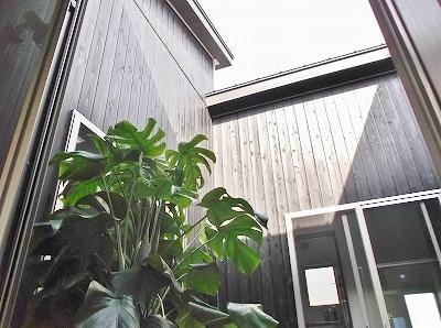 光と空気感に触れる中庭は家族の憩いの場となります。